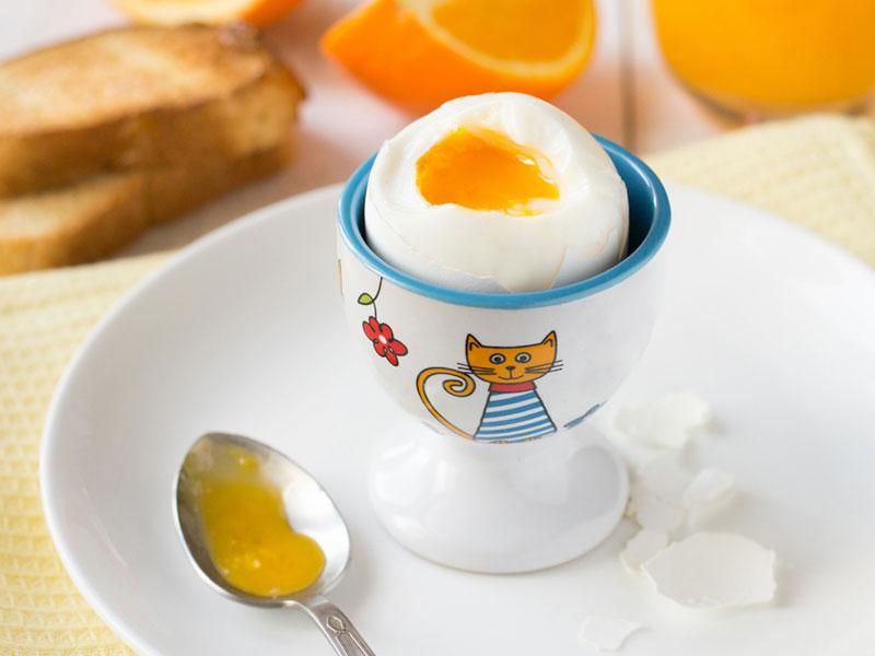 مصرف تخممرغ برای کودکان