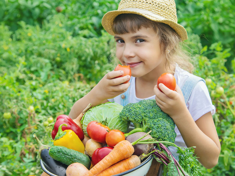 سبزیجات برای رشد کودکان