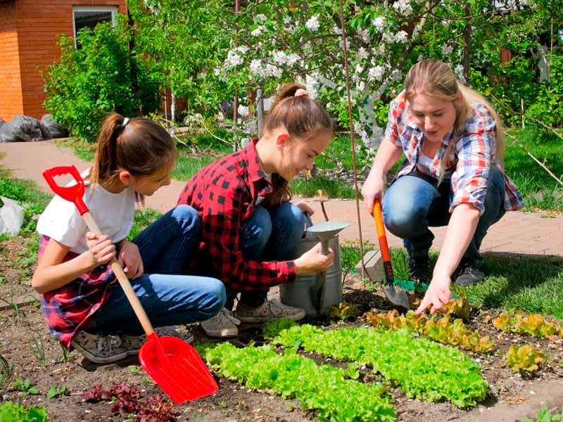 باغبانی دختربچهها