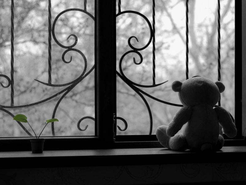 عروسک خرس تنها